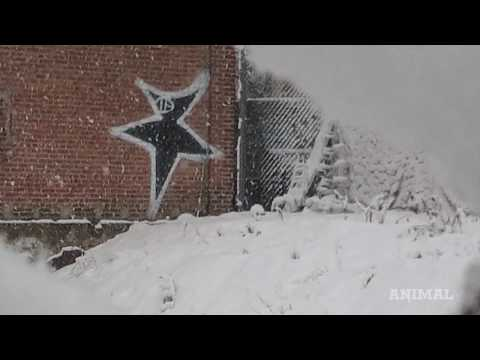 A Brief History of New York Graffiti Art