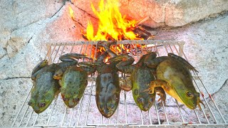 Roasting Frogs Over a Fire - Tasty or Gross?