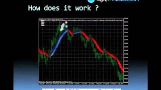 FOREX auto trading software invest 0.1$ - 1$