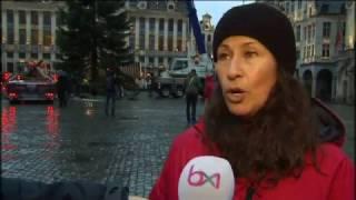 Arrivage du sapin de la Grand-Place de Bruxelles
