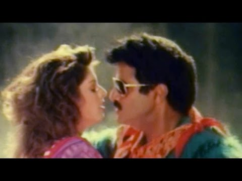 Seethakaalam Premaku Full Video Song || Aswamedham Movie || Balakrishna, Meena, Nagma
