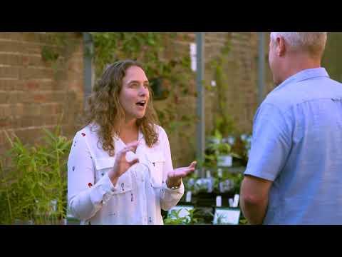 The Garden Gurus - Growing Friends Nursery