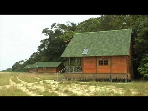 Le développement de l'écotourisme au Gabon