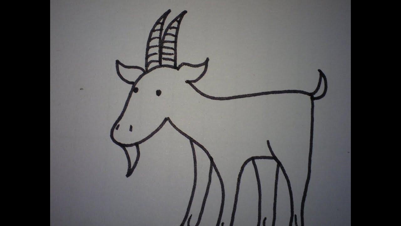 Hoe Teken Je Een Geit Makkelijk How To Draw A Goat