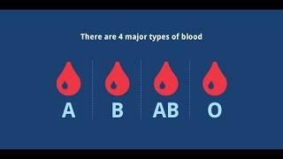 Питание по группе крови.