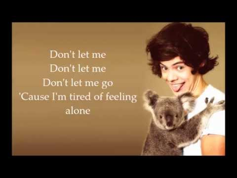 Harry Styles - Don't Let Me Go (Lyrics)