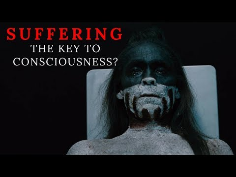 Philosophy of Westworld: Is suffering the key to unlocking consciousness?