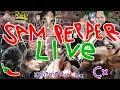 working on the SAMBULANCE day 2   Sam Pepper Live Stream