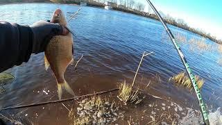 Нормунд ТВ -  отчет о рыбалке Но 5 - длинная, сложная ловля с хорошым завершением :)