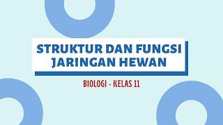 Hal-hal yang mempengaruhi Hasil Swab Test - EL JOHN Medical Forum 2/4 Synopsis : Swabtest merupakan .