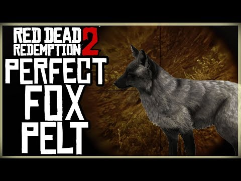 HOW TO GET A PERFECT FOX PELT - RED DEAD REDEMPTION 2 PRISTINE FOX HUNT
