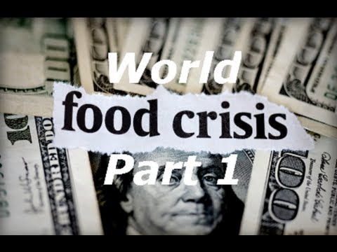 World Food Crisis Part 1 (Global Food Crisis Special Report With Steve Shenk)