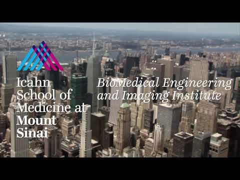 BMEII Imaging Research Walkthrough