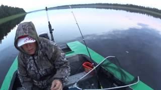 Рыбалка / Язь на фидер / Река Печора / Республика Коми / Фидер