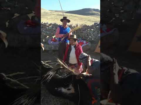 HERRANZA DE SAN JACINTO DE ESPITE- FAMILIA CLAUDIO-