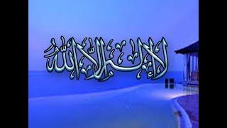 لا إله إلا الله   مقطع مؤثر للشيخ الحويني