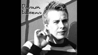 Dominik Eulberg - Die Alpenstrandläufer Von Spiekeroog