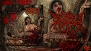 Decimated Humans - Overture in Barbaric Mutilations [Full EP Stream] (2015) Exclusive Premiere