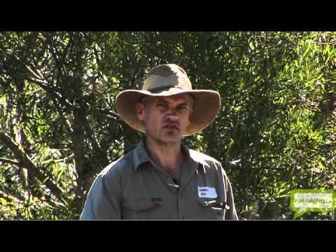 Summit Organics Farmwalk May 2010