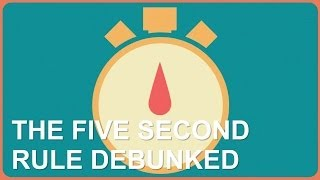 Five Second Rule Debunked!
