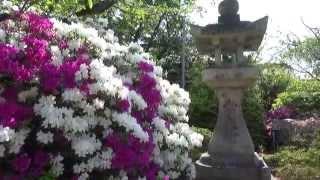 熊野古道歩き旅・紀伊路編#07 石津神社→聖神社 2015/05/02