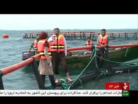 Iran KiaSar city, Fish farming cage in Caspian sea قفس پرورش ماهي درياي مازندران شهر كياسر ايران