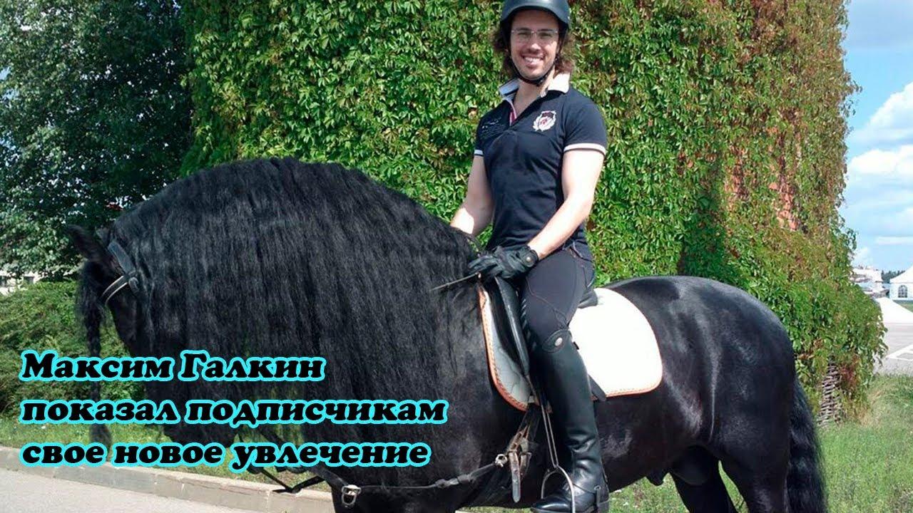 Максим Галкин показал подписчикам свое новое увлечение