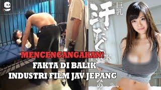 Video Fakta Mencengangkan Dibalik Industri Film  Pan4s Jepang download MP3, 3GP, MP4, WEBM, AVI, FLV Agustus 2018