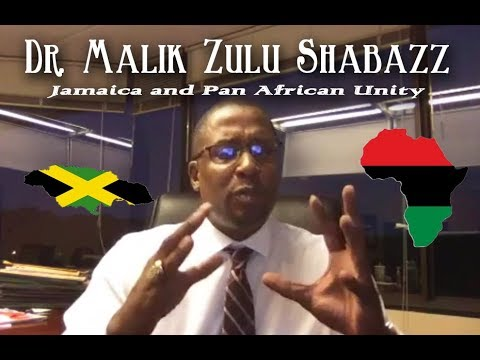 Dr. Malik Zulu Shabazz chats on Jamaica and Pan African Unity