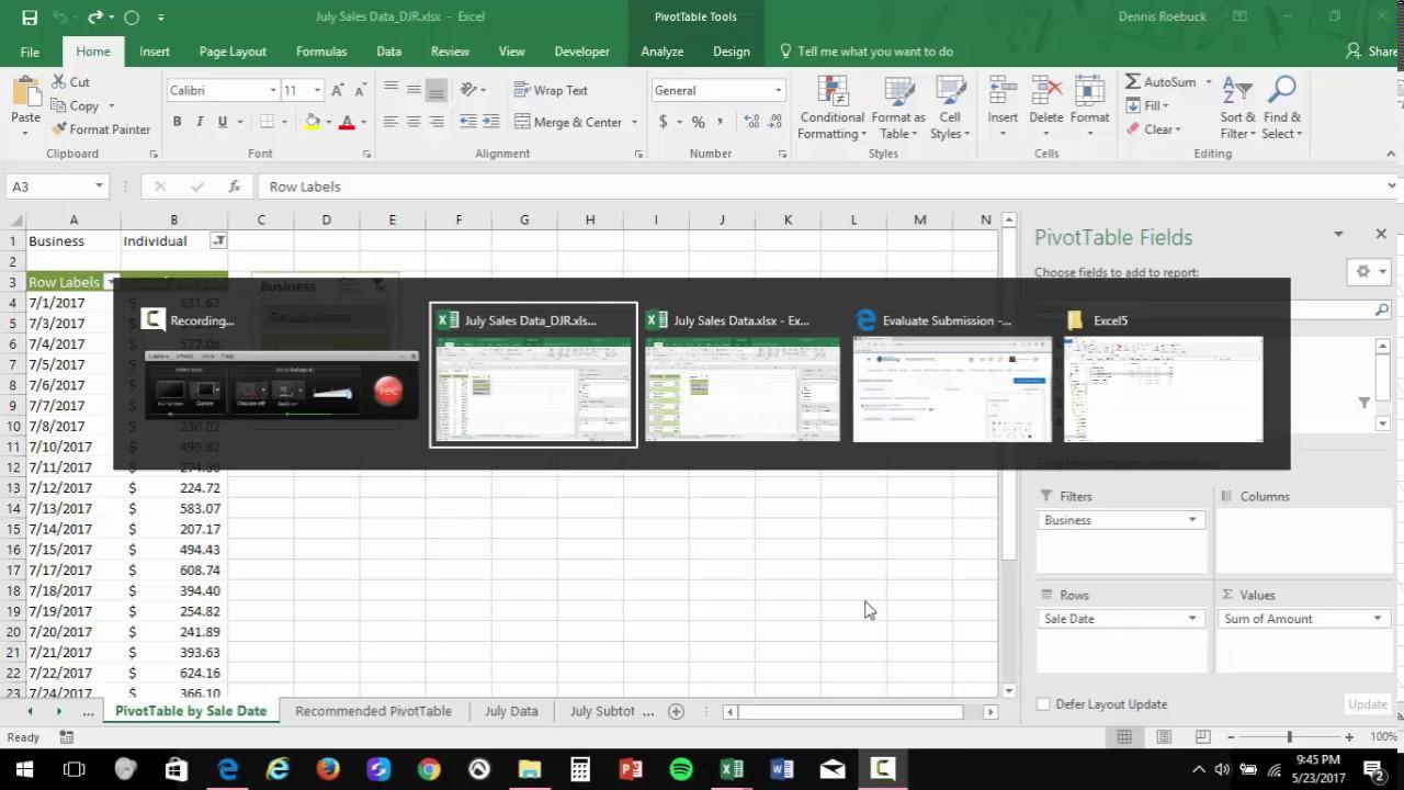 Excel Pivottable Example 1