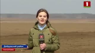 На юго-востоке Беларуси посевная кампания стартоваа почти на месяц позже обычного. Панорама