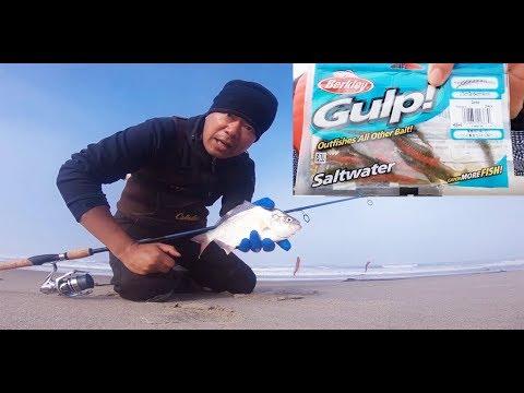 Oregon Coast Surf Fishing - Gulp Sandworm Rig Setup For Surf Perch