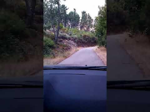 Benfeita   Pai das Donas, ANTES dos incêndios de 15Out2017,  subida da estrada parte 1 Video 2018011