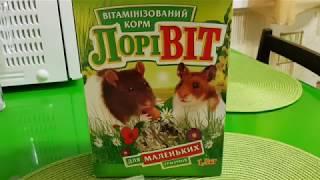 Что будут кушать наши крысы Обзор Корма
