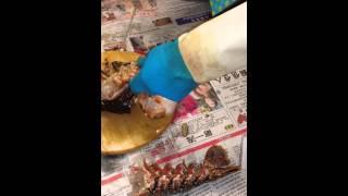 Half Chopped Lobster Attacks