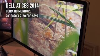 Dell Ultra HD/4K Monitors Starting at $699 | CES 2014