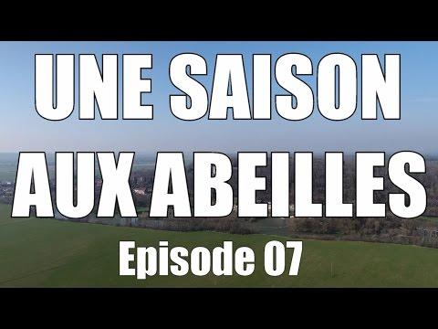 """UNE SAISON AUX ABEILLES - E07 - """"Agresseurs et Panacée"""""""