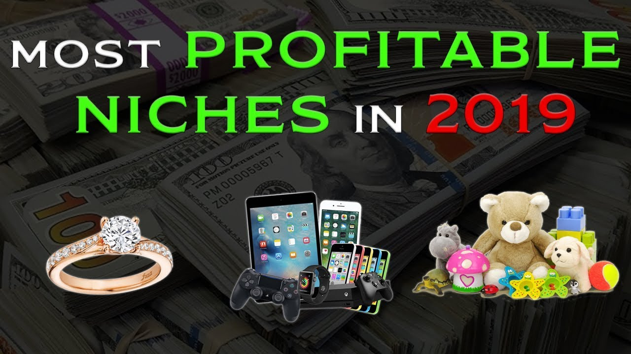 THE MOST PROFITABLE Dropshipping Niches In (2019)