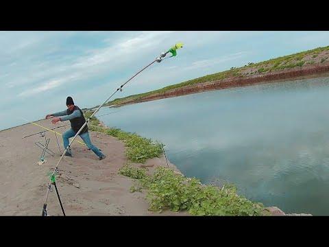 3-4 сентября. Великолепная семерка. Сазаны, караси. Рыбалка на канале 2019.
