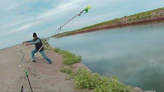 3 4 сентября Великолепная семерка Сазаны караси Рыбалка на канале 2019