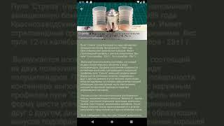 Обзор справочника Патронташ
