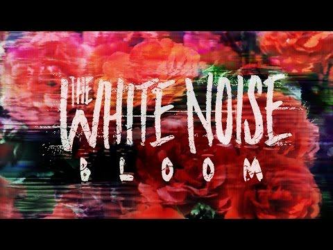 The White Noise - Bloom (Official Music Video)