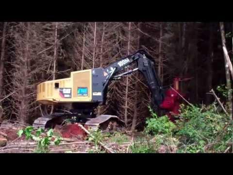 Caterpillar 552 Feller Buncher Logging In Coos Bay, Oregon