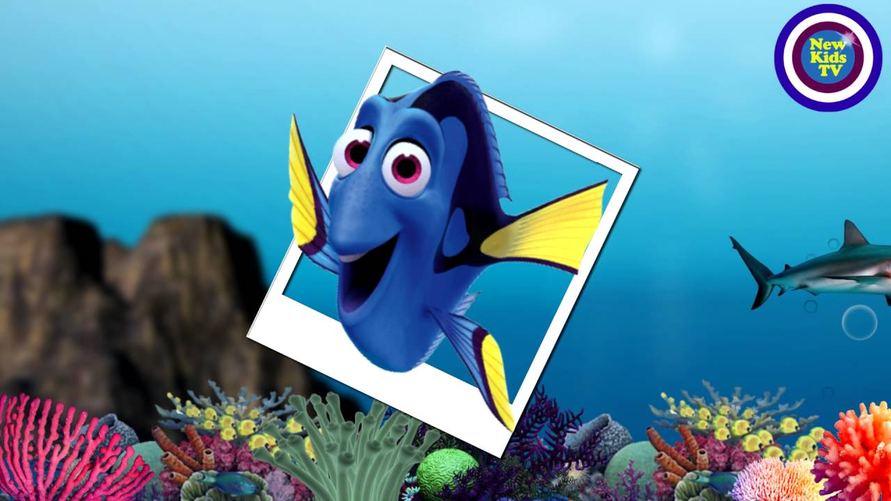 Finding Dory 2016 - The Real Fish! - Animation - New Kids TV