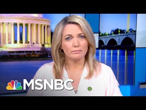 Americans Rally For Gun Safety With Donald Trump, GOP The Only Obstacle | Rachel Maddow | MSNBC