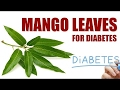 Mango Leaves For Diabetes - Health Benefitshow to lose