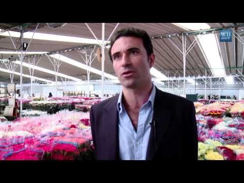 On Board with the Vice President: A Flower Farm in Bogota, Colombia