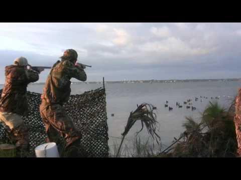 Beach Duck Hunting