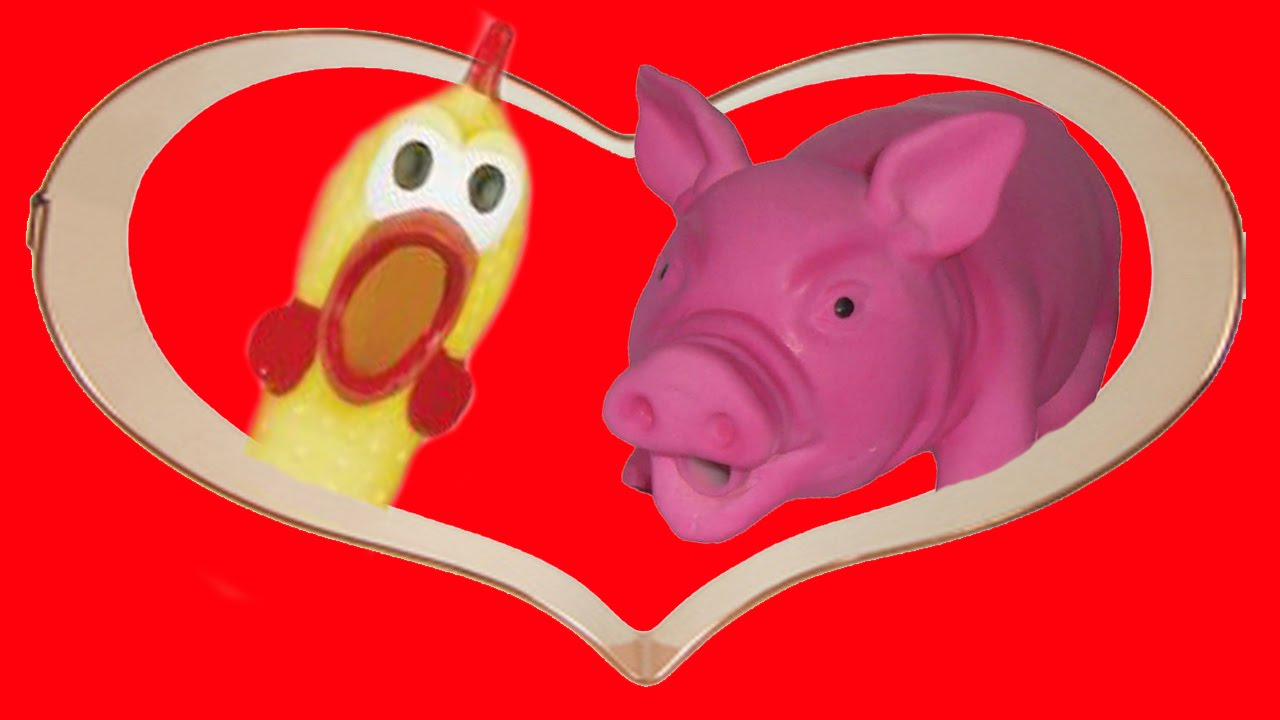 Chicken And The Pig Meme: FUNNY Chicken And Pig Make Love