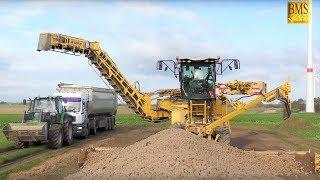 Neue Ropa Kartoffel-Maus 5 bei der Stärkekartoffelverladung 2017 - Largest potato loader - farmer